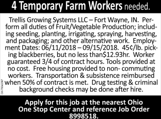 4 Temporary Farm Workers